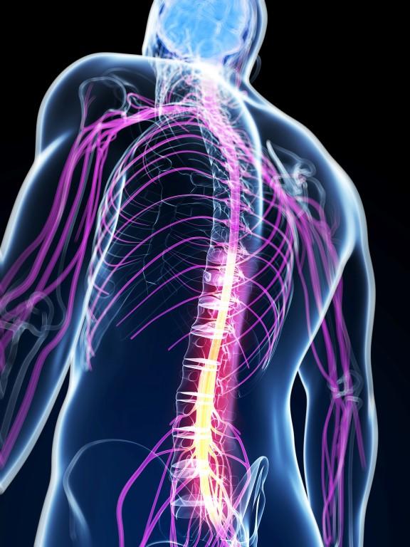 Povreda kičmene moždine