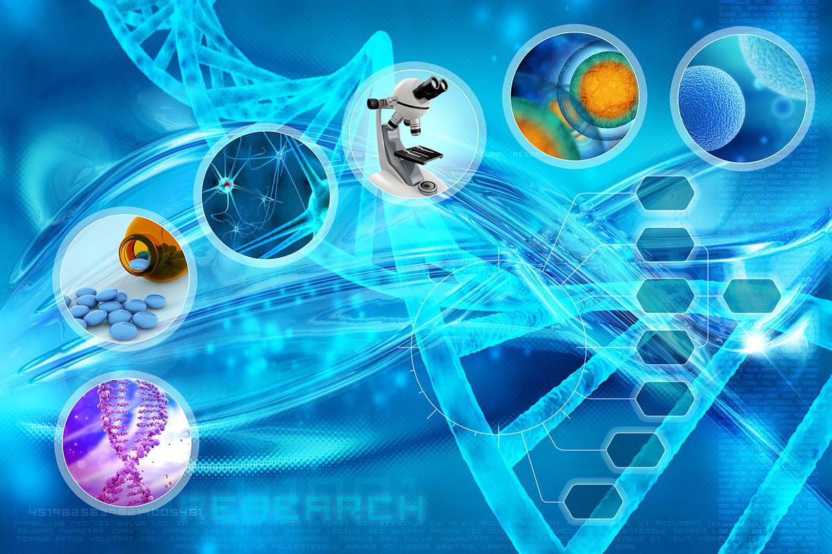 Šta su matične ćelije i kako će se koristiti za liječenje?
